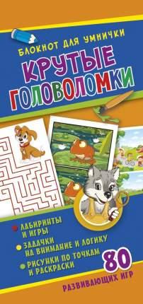 Блокнот для Умничк и крутые головоломки Nd Play Развивающая книга