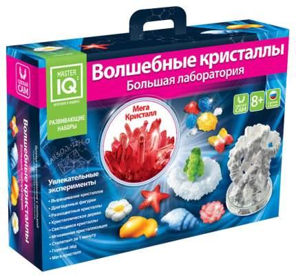 Набор для выращивания кристаллов Master IQ2 Большая лаборатория