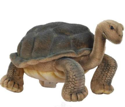 Мягкая игрушка Hansa Галапагосская черепаха 30 см