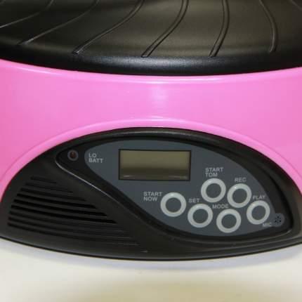 Автокормушка Petwant с ж/к дисплеем и отделением для льда (Ø 33 x В 15 см, Розовый)