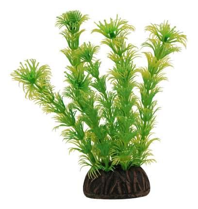 Laguna Растение Миреофилум желто-зеленое, 13 см
