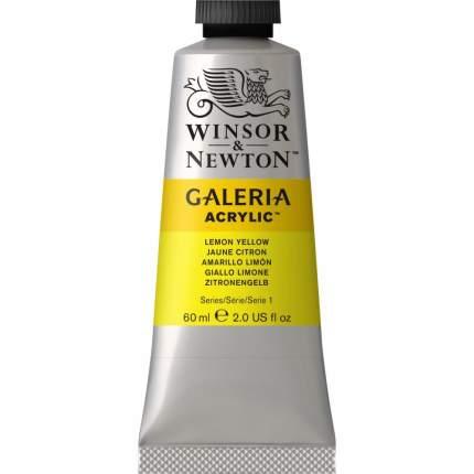Акриловая краска Winsor&Newton Galeria желтый лимон 60 мл