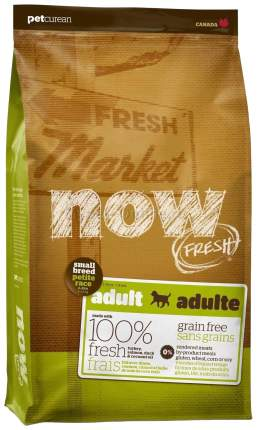 Сухой корм для собак NOW Fresh Adult Small, для мелких пород, индейка, утка, овощи, 11,3кг