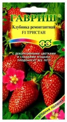 Семена Клубника ремонтантная Тристан F1, 5 шт, Гавриш
