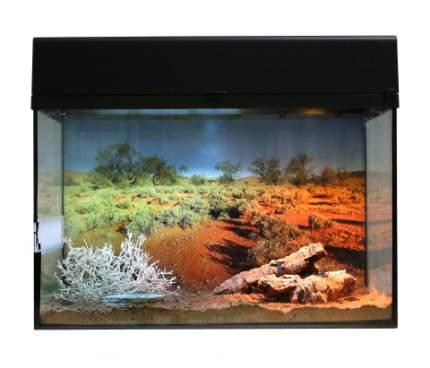 Террариум для рептилий Lucky Reptile Стартовый комплект для Гекконов, черный, 50x40x28 см