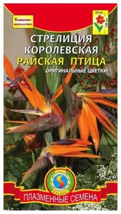 Семена Стрелиция королевская Райская птица, 2 шт, Плазмас