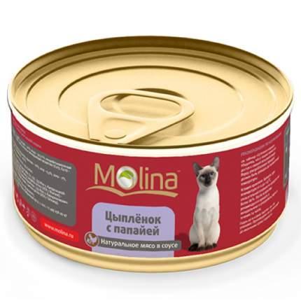 Консервы для кошек Molina, цыпленок с папайей, 80 г