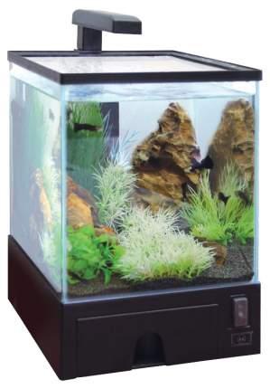 Аквариум для рыб AA-Aquariums Aqua Box Betta, черный, 5,7 л