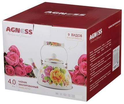Чайник для плиты Agness 934-339 3 л