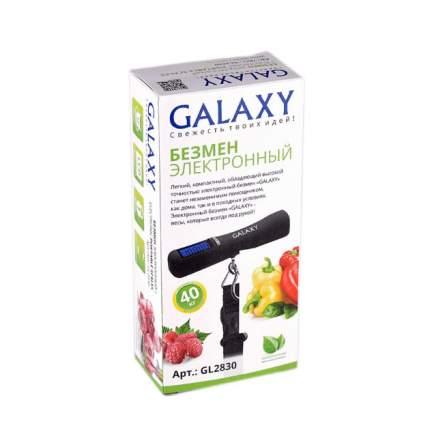 Безмен Galaxy GL 2830