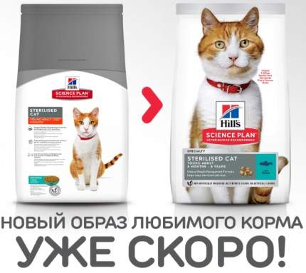 Сухой корм для кошек Hill's Science Plan Sterilised, для стерилизованных, рыба, 8кг