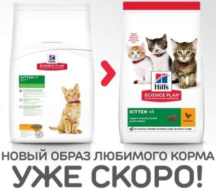 Сухой корм для котят Hill's Science Plan Kitten, курица, 10кг