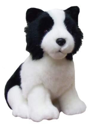 Мягкая игрушка SOYA Щенок породы бордер-колли, 13x11x17 см