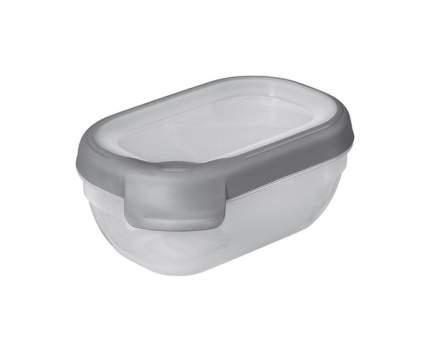Контейнер для хранения пищи Curver 0,5 л
