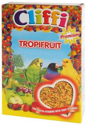 Корм для экзотических птиц Cliffi Яичный с фруктами, 300г