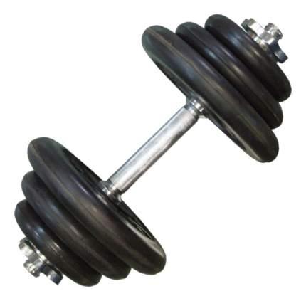 Гантель разборная MB Barbell Atlet 27,5 кг