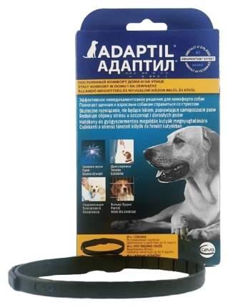 Ошейник Ceva Адаптил  L корректор поведения собак *20 265381