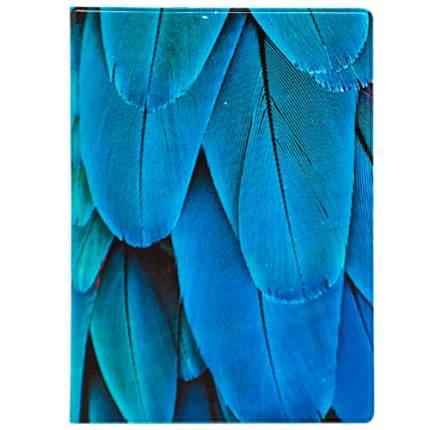 """Обложка для паспорта """"Feather blue"""""""