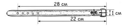 Ошейник Дарэлл Люкс 10мм, обхват 19*23см двухслойный