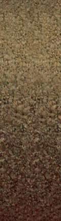 Пряжа для вязания Ализе Rainbow (15%альпака,15%шерсть,60%акрил,10%полиэстер) 350гр/850м цв