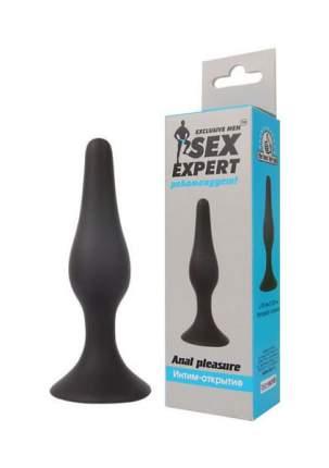 Чёрная анальная втулка Sex Expert 10 см