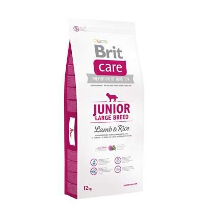 Сухой корм для щенков Brit Care Junior Large Breed, для крупных пород, ягненок и рис, 18кг