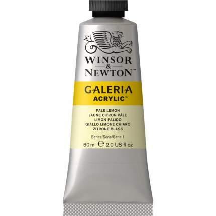 Акриловая краска Winsor&Newton Galeria бледный лимон 60 мл