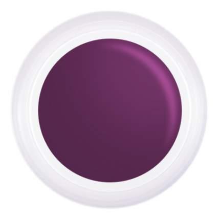 Гель-краска Patrisa Nail AE81 фиолетовая №T8 стемпинг,аэропуффинг,китайская роспись, 5 гр