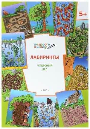 Книга Лабиринты. Чудесный лес
