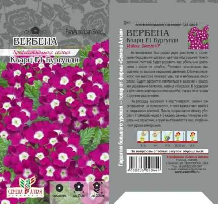 Семена Вербена Кварц Бургунди F1, 5 шт, PanAmerican Seeds семена Семена Алтая