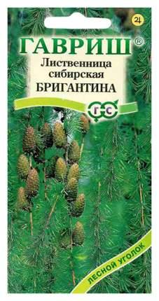 Семена Лиственница сибирская Бригантина, 0,2 г Гавриш