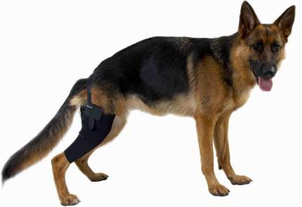 Протектор на левое колено Kruuse Rehab Knee Protector для собак (L)