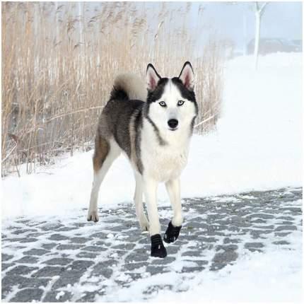 Обувь для собак TRIXIE размер XL, 2 шт черный