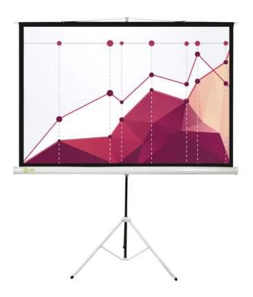 Экран для видеопроектора Cactus CS-PST-180X180
