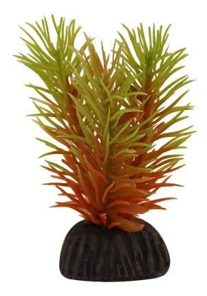 Laguna Растение Маяка, 8 см