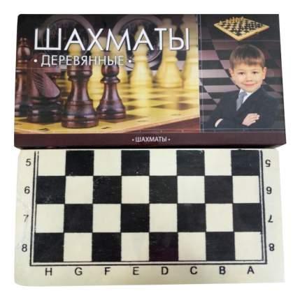 Шахматы деревянные играем вместе D22036-R
