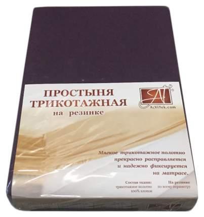 Простыня АльВиТек ПТР-БАК-160 цвет Темно-фиолетовый
