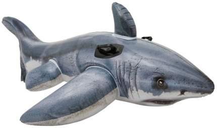 Надувная игрушка Intex Акула с57525