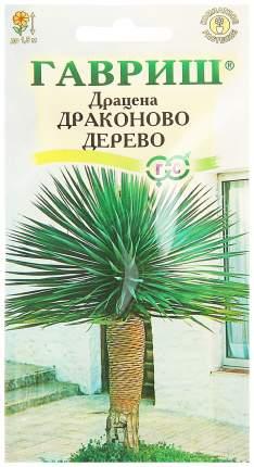 Семена Драцена Драконово дерево, 3 шт, Гавриш