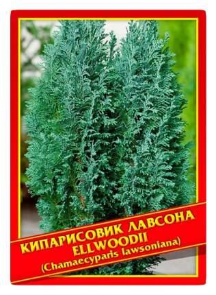 Семена Кипарисовик Лавсона «Ellwoodii», 0,2 г Симбиоз