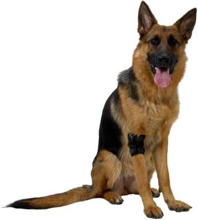 Протектор на локтевой сустав Kruuse Rehab Elbow Protector для собак (M)