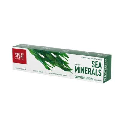 Зубная паста SPLAT Special Sea Minerals 75 мл