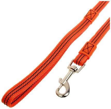 Поводок для собак Зооник 11426-2 капроновый с двойной латексной нитью 2м х 20мм оранжевый