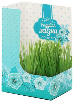 Открытка с растущей травой Каждый день - это маленькая жизнь Sima-Land
