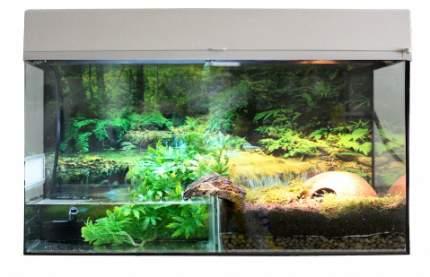 Палюдариум для рептилий Lucky Reptile Стартовый комплект для Амфибий, белый, 80x52x40 см