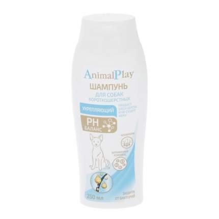 Шампунь для собак Animal Play Укрепляющий для короткошерстных, укрепляющий, 250 мл