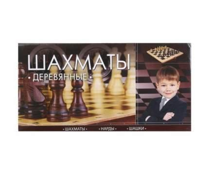 Шахматы деревянные играем вместе D22040-R