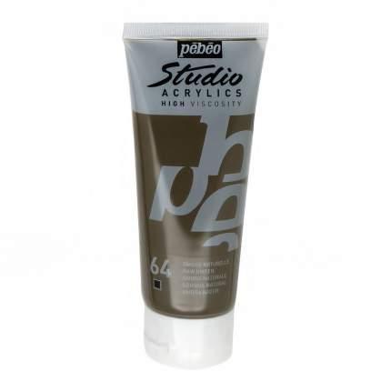 Акриловая краска Pebeo Studio Acrylics 831-064 умбра натуральная 100 мл