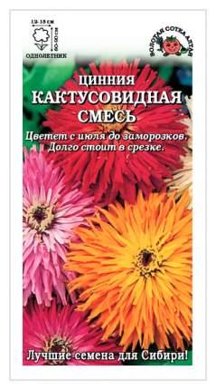 Семена Цинния Кактусовидная, Смесь, 0,3 г Золотая сотка Алтая