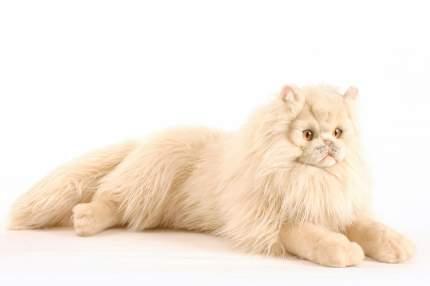 Мягкая игрушка Hansa Персидский кот Табби кремовый 70 см